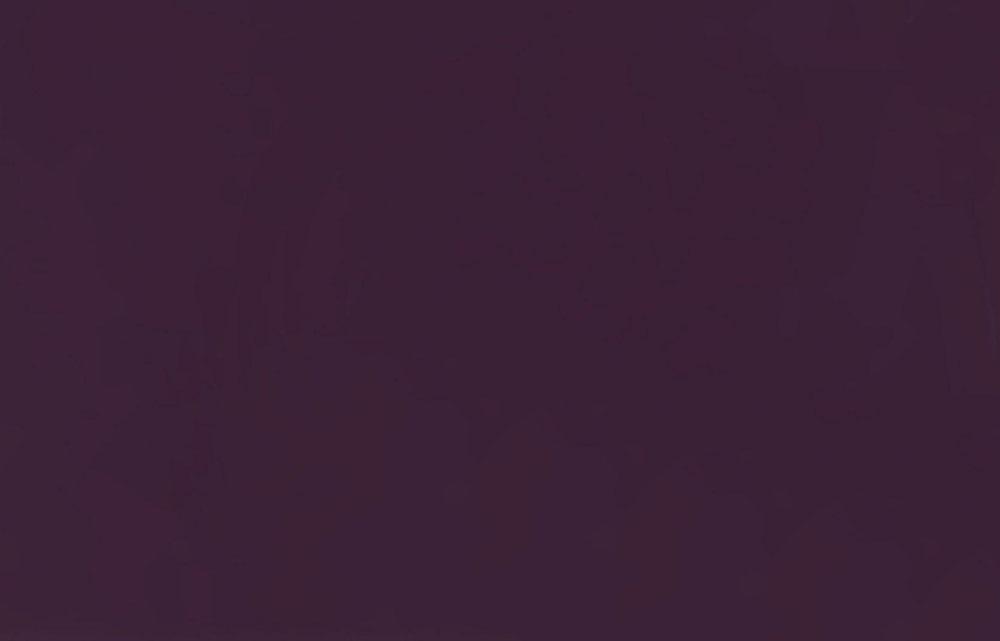 Баклажан глянец 91040