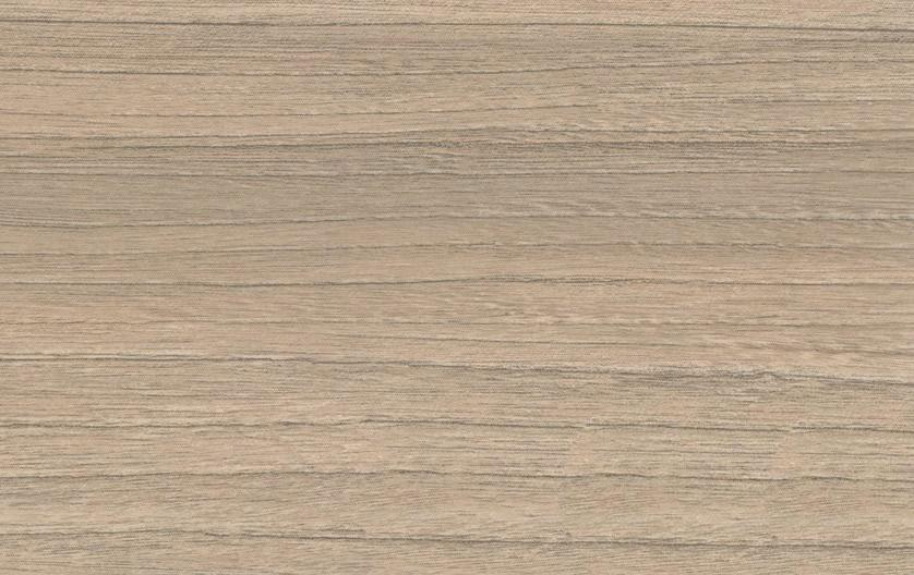 Дуб скальный 2444-4