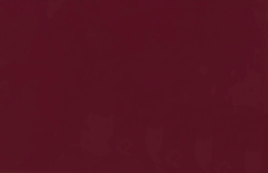Вишнёвый глянец 3077